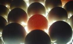 Миражирование яиц